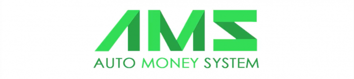 the auto money system logo