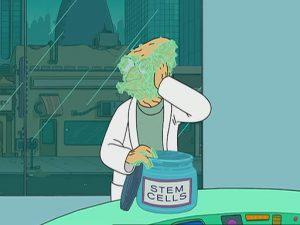 stem cells funny image